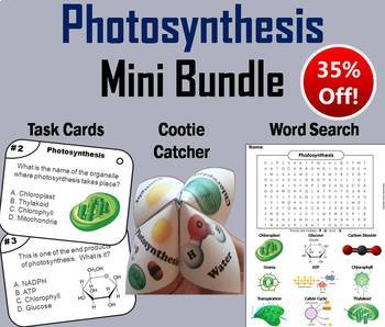 Photosynthesis Activity, Task Cards, and Word Search Mini Bundle