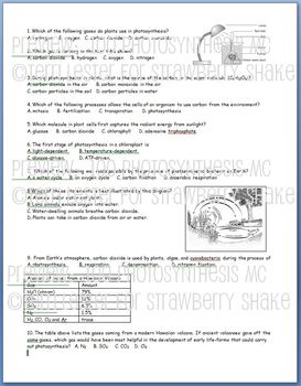Photosynthesis Test Bank:100 Editable Multiple Choice Questions for Biology