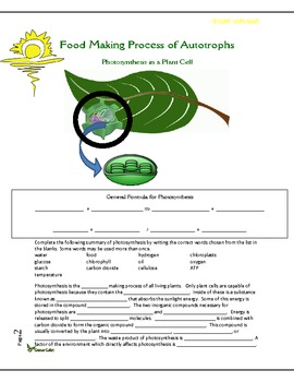 Photosynthesis - The Food Making Process for Autotrophs