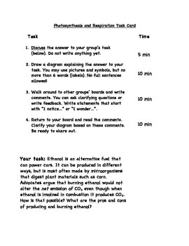 Photosynthesis Thought Task