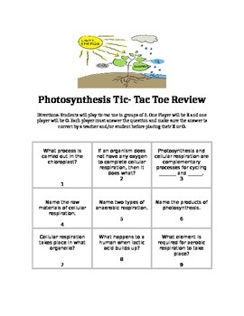 Photosynthesis Tic-Tac Toe Review