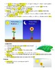 Photosynthesis, Transpiration, and Respiration Guided Notes Answer Key