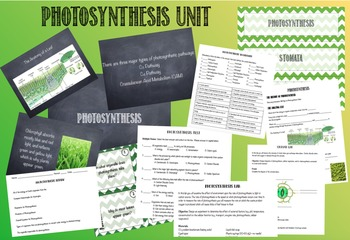 Photosynthesis: Unit Plan