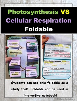 Photosynthesis VS Cellular Respiration Foldable