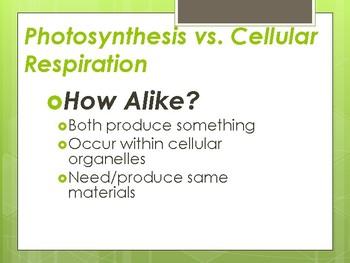 Photosynthesis VS Cellular Respiration Presentation