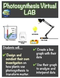 Photosynthesis Virtual Lab