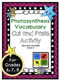 Photosynthesis Vocabulary Activity