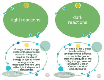 Photosynthesis: Vocabulary Card Activities with Def. Science Study Guide NO PREP