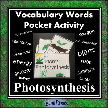 Photosynthesis Vocabulary Pocket Activity with Word Wall Cards