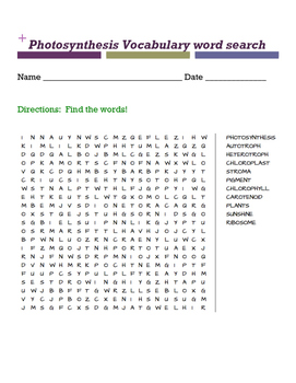 Photosynthesis Vocabulary word search