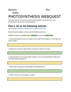 Photosynthesis Webquest