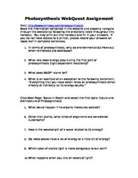 Photosynthesis Webquest Assignment