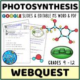Photosynthesis Webquest - Printable & Digital