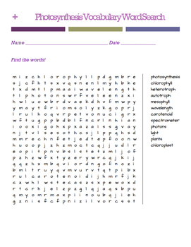 Photosynthesis Word Search