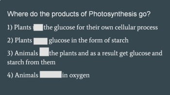 Photosynthesis and Cell Respiration -- PowerPoint, Notes, Cut and Paste Activity