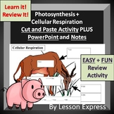 Photosynthesis and Cell Respiration -- PowerPoint, Notes,