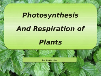 Photosynthesis and cellular respiration teaching resources photosynthesis and cellular respiration powerpoint photosynthesis and cellular respiration powerpoint fandeluxe Gallery