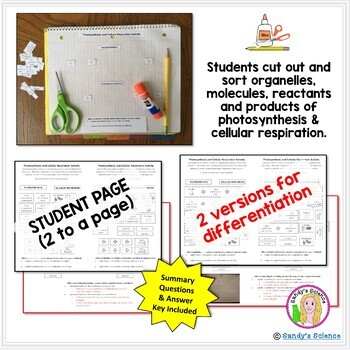 Photosynthesis and Cellular Respiration (cut & paste) Activity