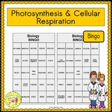 Photosynthesis and Cellular Respiration BINGO