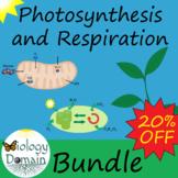 Photosynthesis and Cellular Respiration: Bundle