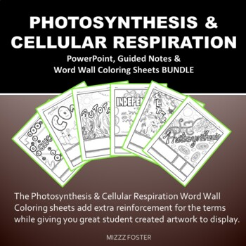 Photosynthesis and Cellular Respiration Bundle: PPT, Foldable, Word Wall Sheets