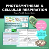 Photosynthesis Cellular Respiration Presentation, Guided N