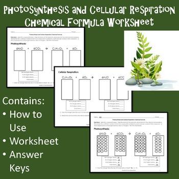 photosynthesis and cellular respiration chemical formula worksheet. Black Bedroom Furniture Sets. Home Design Ideas