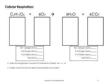 and Cellular Respiration Chemical Formula Worksheet