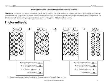 Photosynthesis and Cellular Respiration Chemical Formula Worksheet