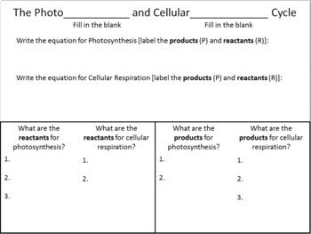 Photosynthesis and Cellular Respiration: Comparison with Answer Key