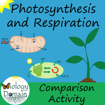 Photosynthesis and Cellular Respiration: Comparison with A