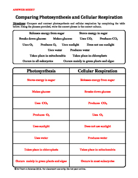 Photosynthesis and Cellular Respiration Comparison Chart