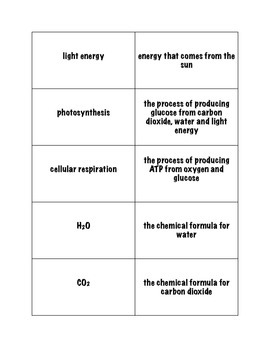 Photosynthesis and Cellular Respiration Concentration Game