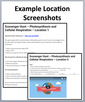 Photosynthesis and Cellular Respiration – Device-Based Scavenger Hunt Activity