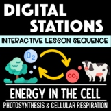 Photosynthesis and Cellular Respiration Digital Stations - Distance Learning