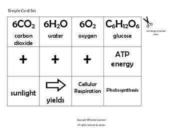 Photosynthesis and Cellular Respiration Equation Puzzle Cards