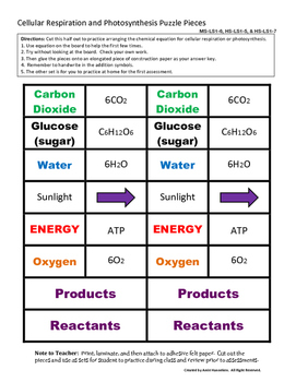 Photosynthesis and Cellular Respiration Equation Puzzle Pieces