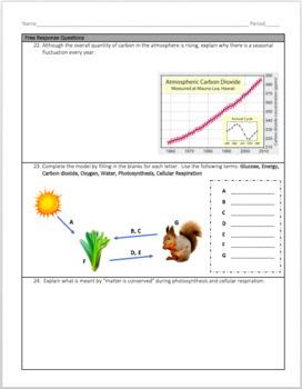 Photosynthesis and Cellular Respiration Exam