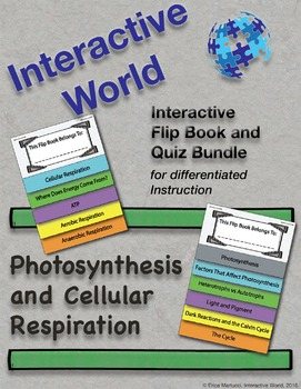Photosynthesis and Cellular Respiration Interactive Flip Book and Quiz BUNDLE