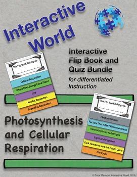 Photosynthesis and Cellular Respiration Interactive Flip B