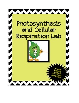 Photosynthesis and Cellular Respiration Lab!