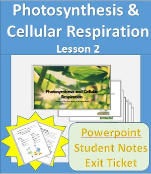 Photosynthesis and Cellular Respiration Lesson 2 Powerpoin