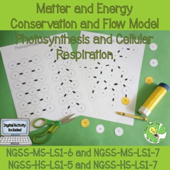Photosynthesis and Cellular Respiration- Matter and Energy Flow Model