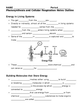 Photosynthesis and Cellular Respiration Notes Outline Lesson Plan