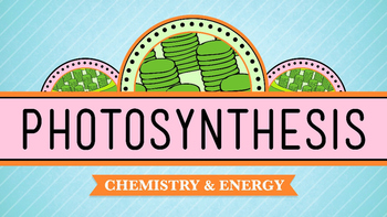 Photosynthesis and Cellular Respiration PPT Notes