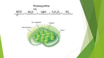 Photosynthesis and Cellular Respiration Power Point notes