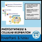 Photosynthesis and Cellular Respiration (PowerPoints, PDF'