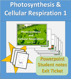 Photosynthesis and Cellular Respiration Powerpoint and student notes