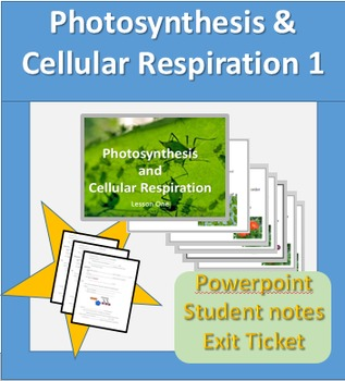 Photosynthesis and Cellular Respiration Powerpoint and stu