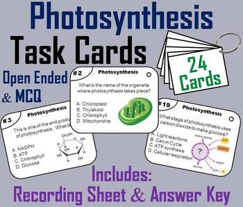 Photosynthesis and Cellular Respiration Task Cards Bundle